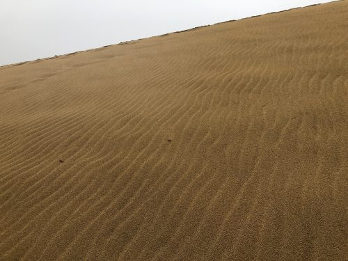 Tottori sand dunes in tottori prefecture along the sea of Japan.