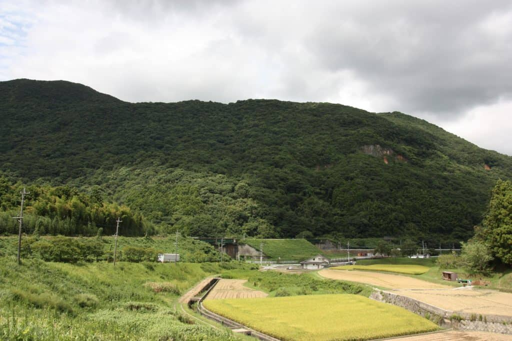 Japanese countryside with ricefields