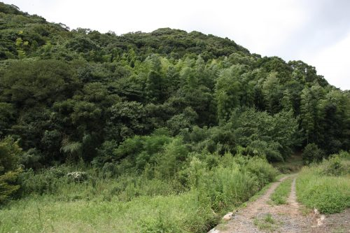 Hiking on Kawara Olle trail in Fukuoka Prefecture, Kyushu, Japan.