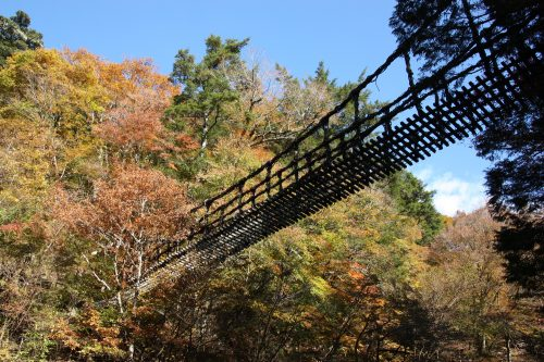 Iya Valley suspension vine bridge from below.