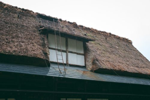 Straw roof maintenance at UNESCO World Heritage site Gokayama village, Toyama Prefecture, Japan