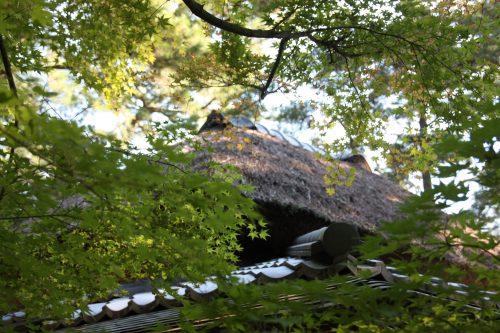 Lovely Ritsurin Garden in Takamatsu, Kagawa Prefecture in Eastern Shikoku.