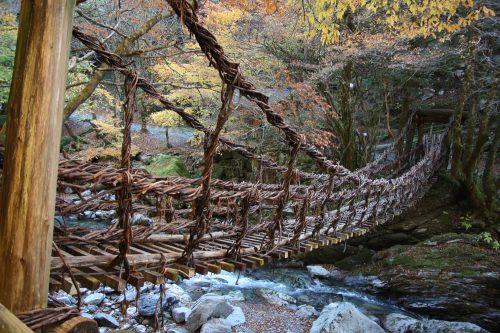 Ivy Bridge at Iya Valley, Tokushima.