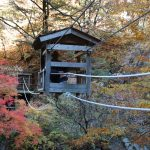 A Shikoku guide: wild beauty and cultural wealth in the eastern part of the island