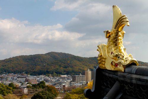 Korakuen Garden and Okayama Castle Fall Foliage