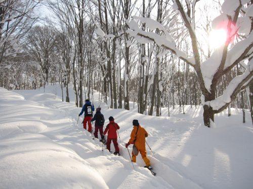 Snow shoeing in Tazawako area, Akita, Tohoku, Japan.