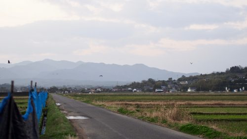 The spectacular rural landscape of southwest Kyushu.
