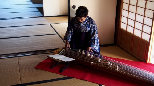 A Japanese woman playing the koto.