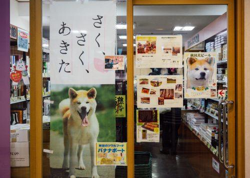 Exterior of Akita antenna shop