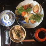 Organic and Umami: Culinary Discoveries in Saiki