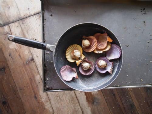 Hiyougi shells