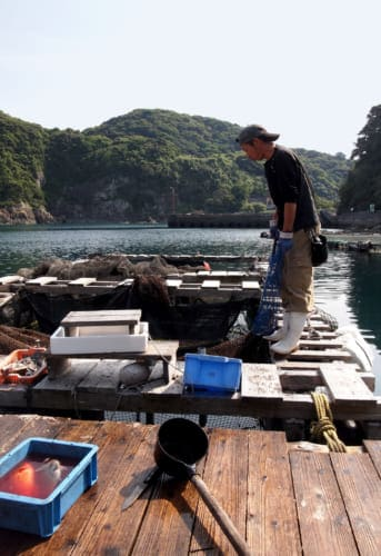 Fukashima Shokudo private fish pen