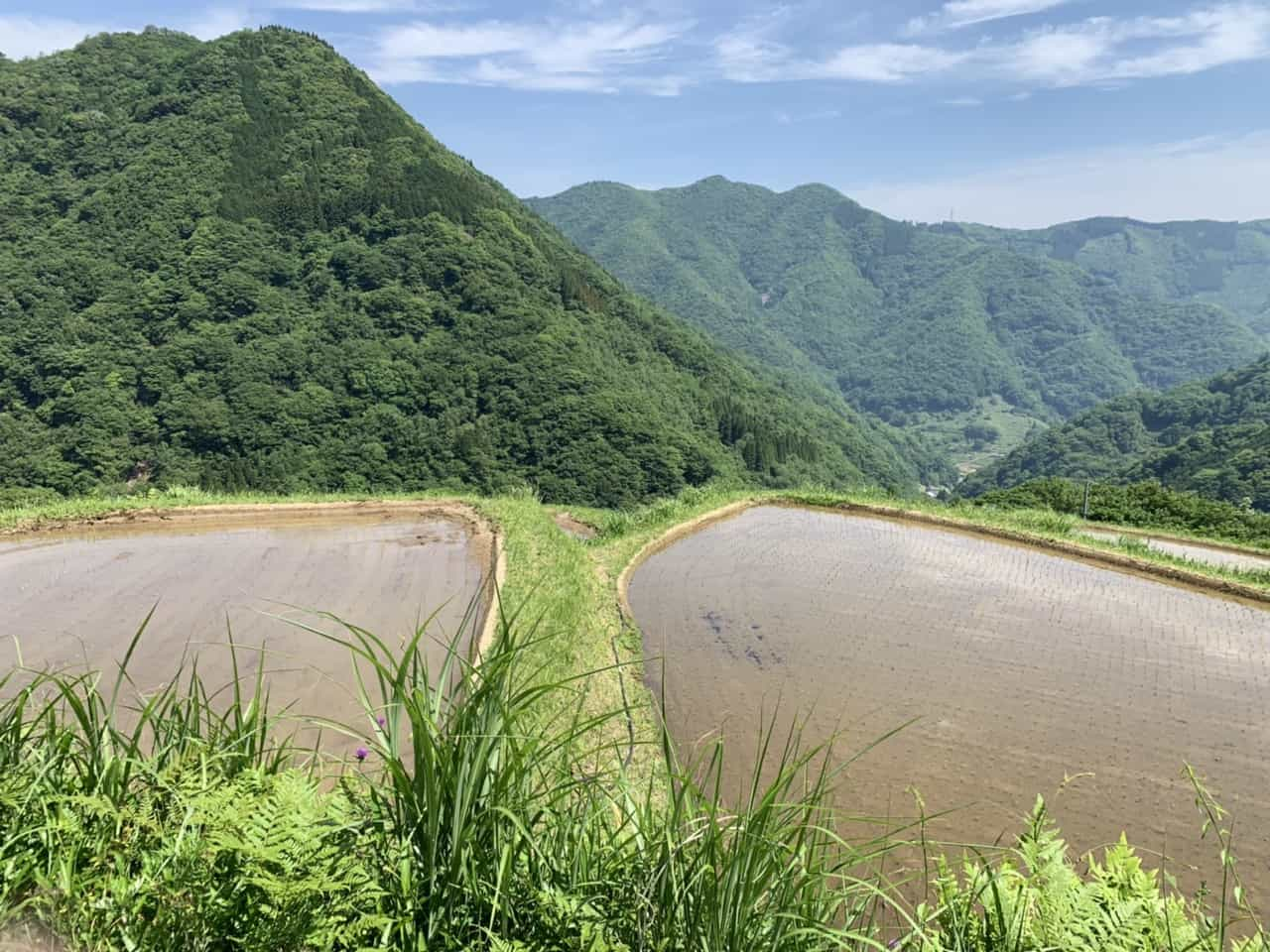Traditional Hospitality at a Sake Producing Farm in Takachiho