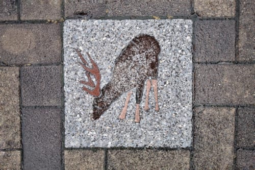 Animal images on the streets of Ojika