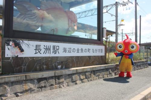 Nagasu Goldfish Town