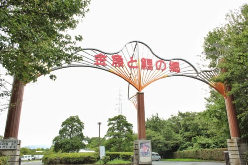 Entrance gate of the goldfish center