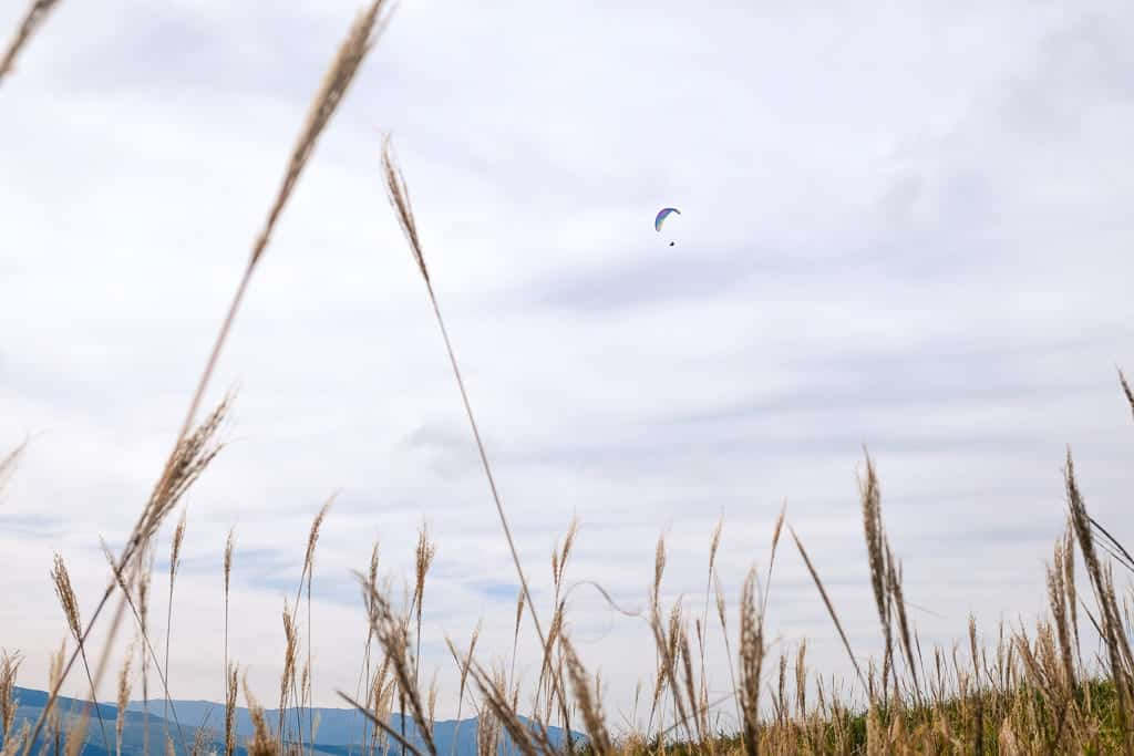 Paragliding, an outdoor activity to try in Aso, Kumamoto, Japan