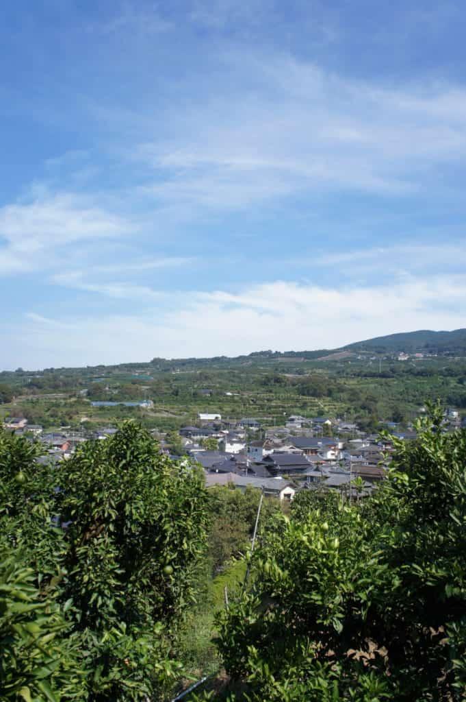 The landscape seen from Mizumoto Orange Garden
