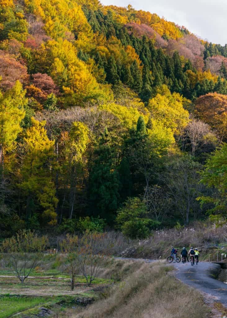 Fall colors on our cycling tour of Iiyama
