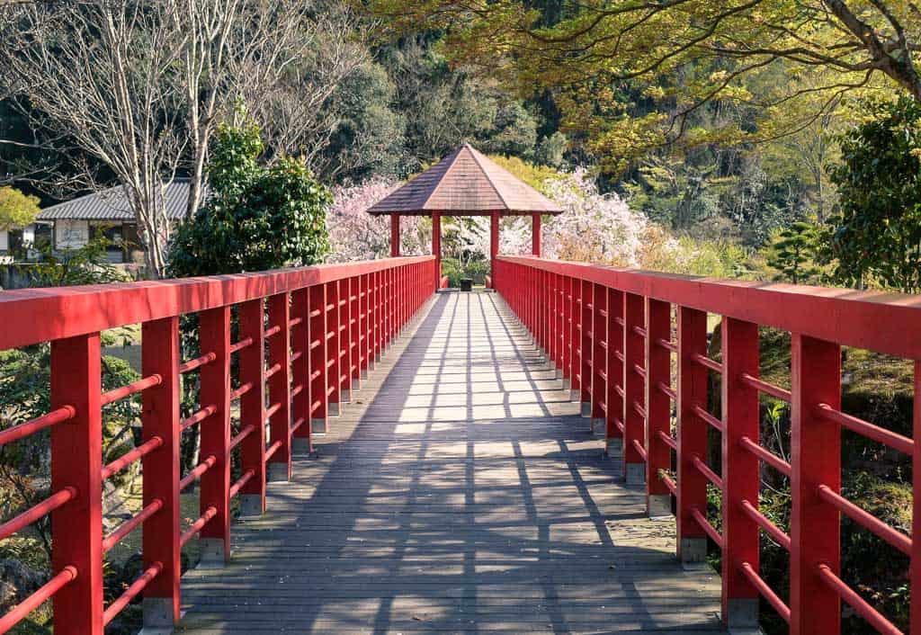 traditional Japanese red bridge leading into traditional japanese garden during sakura cherry blossom season in kyushu, japan