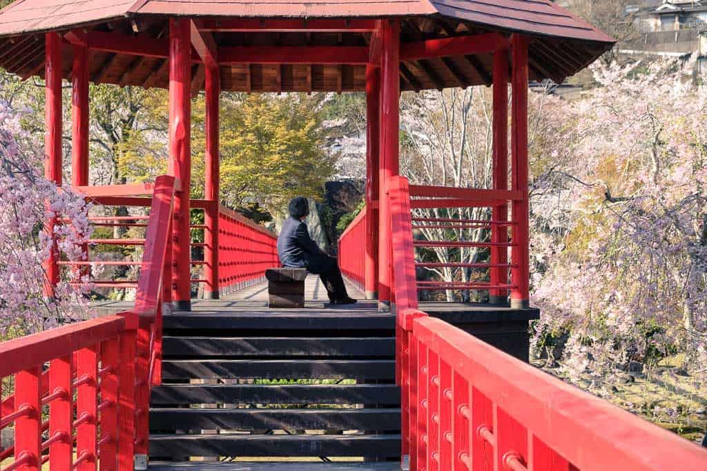 A quiet teahouse among sakura blossoms in Japan