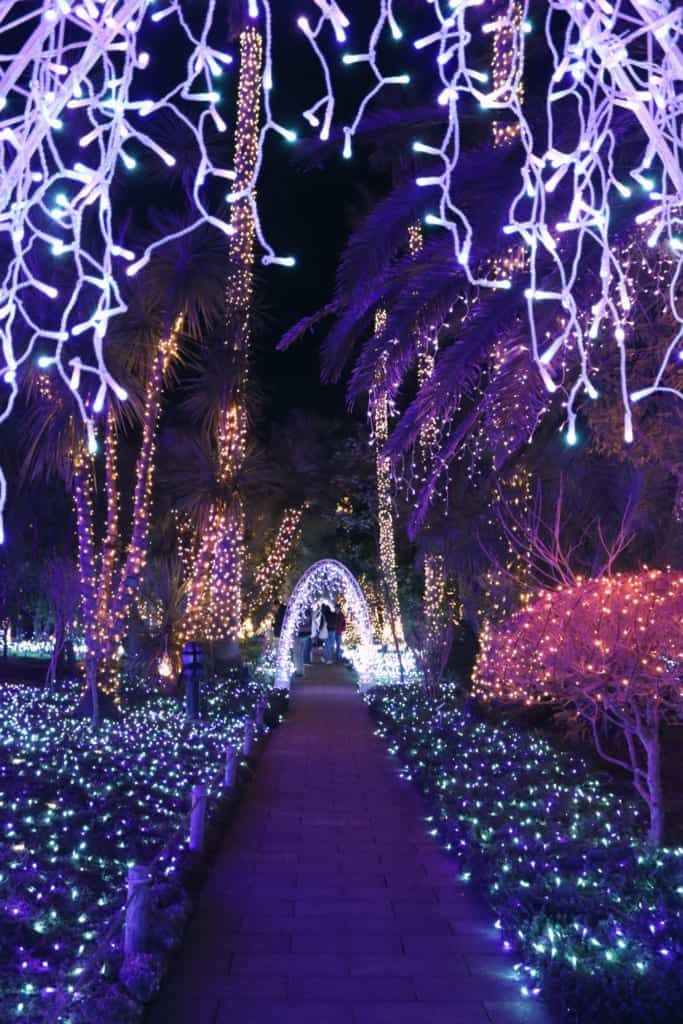 The Enoshima garden is filled with Winter illuminations
