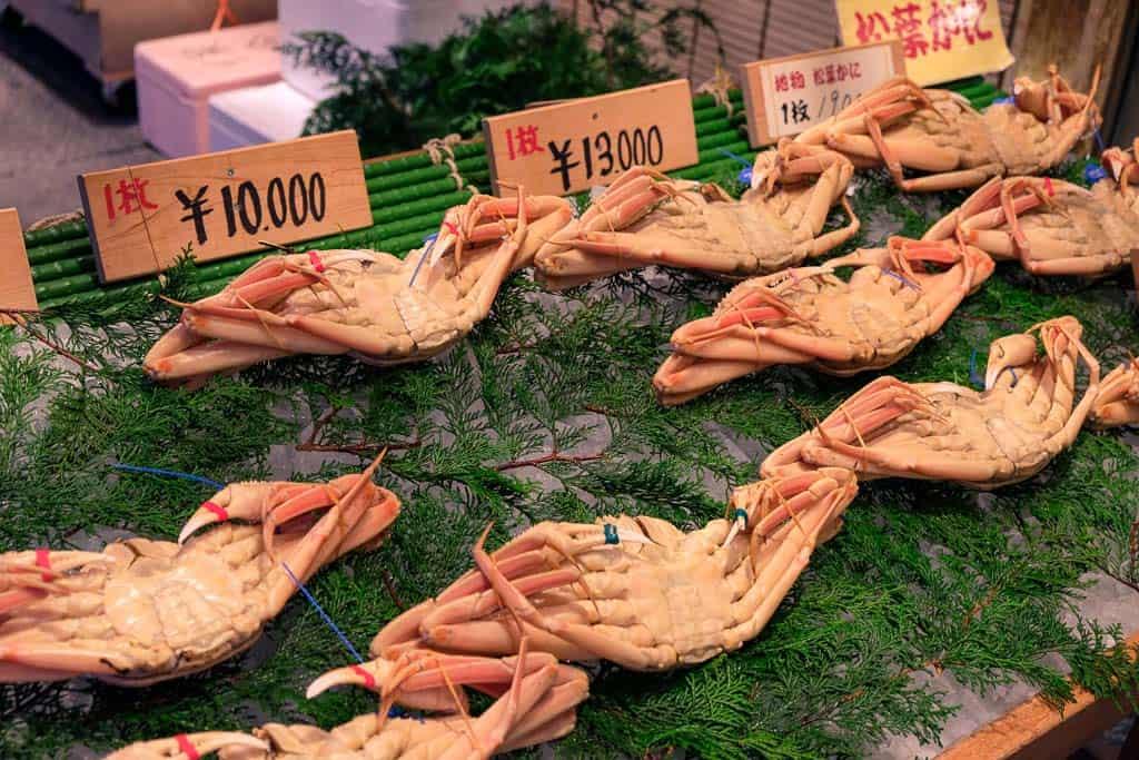 fresh, local crab at Nishimuraya Hotel Shogetsutei, kinosaki onsen