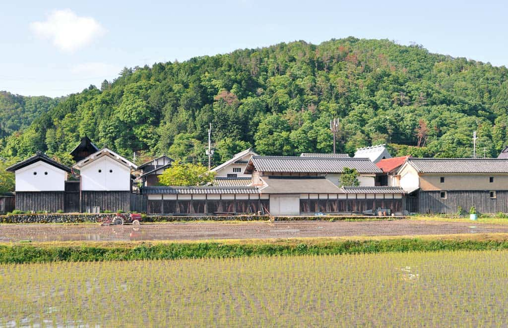 rice fields at Fukusumi district of Tamba-Sasayama