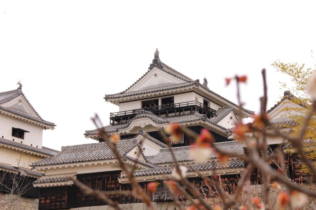 Matsuyama castle in Ehime, Shikoku, Japan.