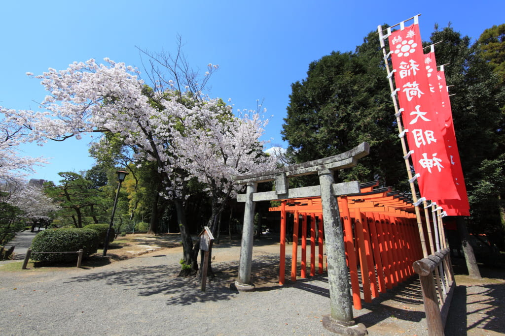 Red torii tunnel at Suizenji Park