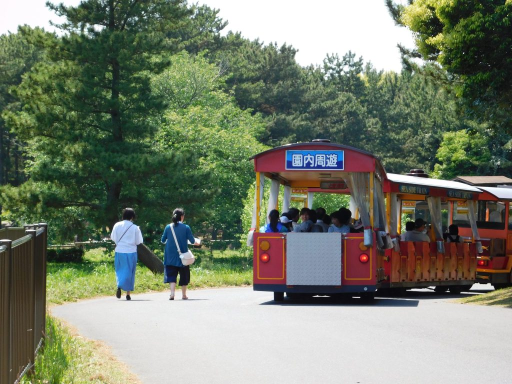 Train at Hitachi Seaside Park.
