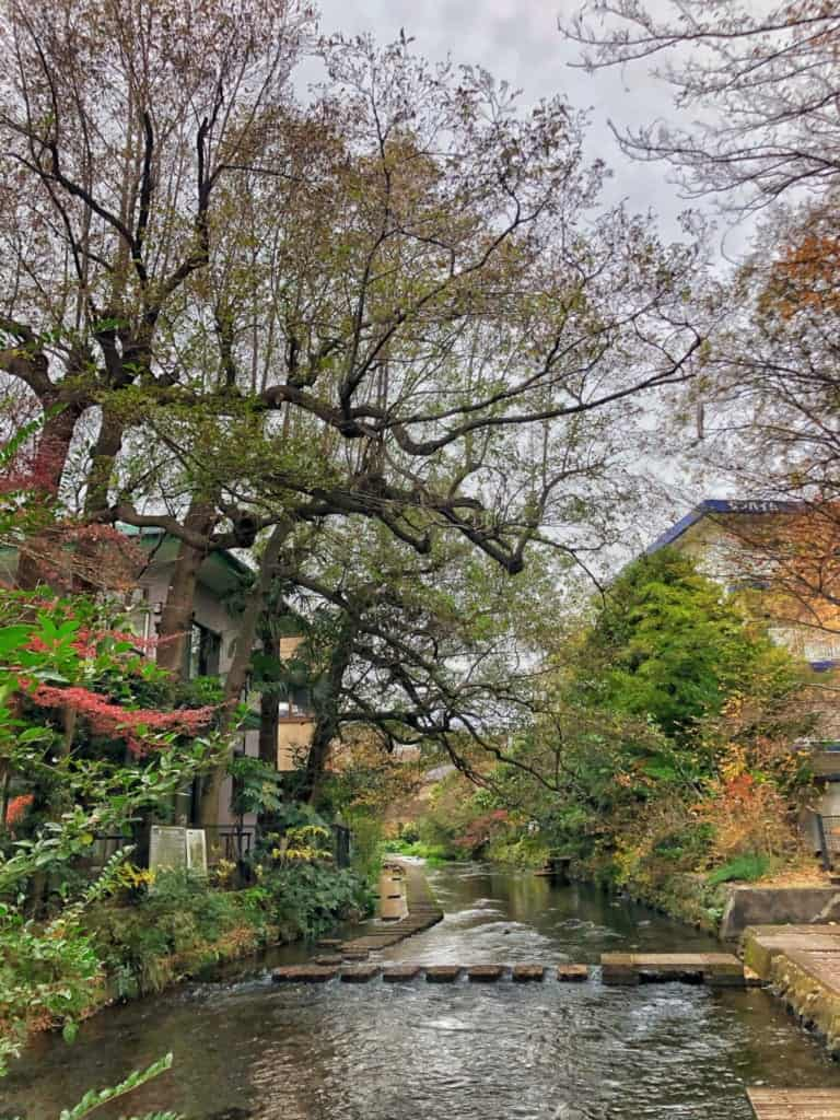 Beginnings of the Genbegawa in Mishima along the Hakone Hachiri