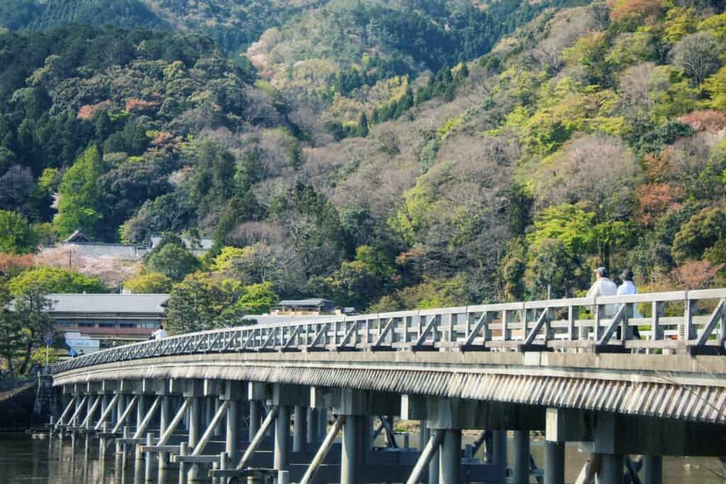 Togetsukyo and the surrounding forest