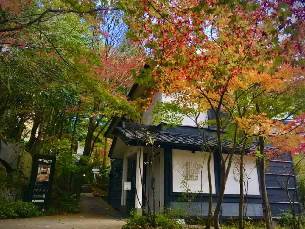 Autumn leaves in front of a Japanese building