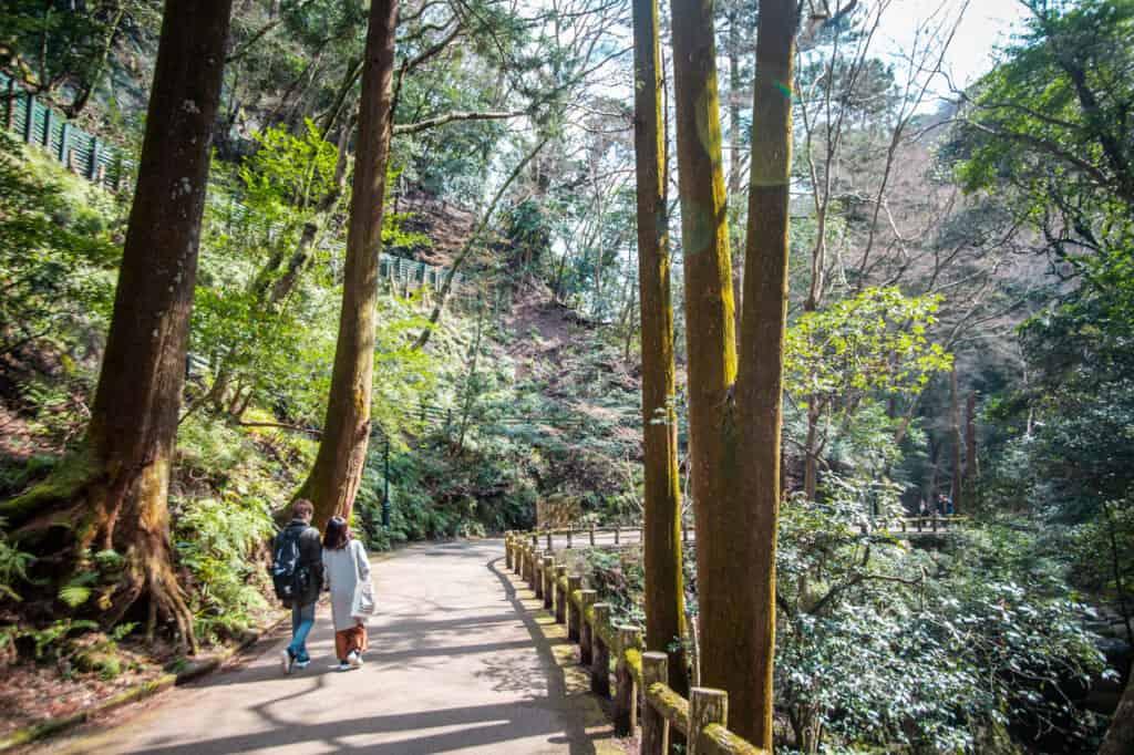 mino park trail