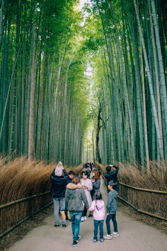 Tourists taking pictures in Arashiyama's bamboo grove