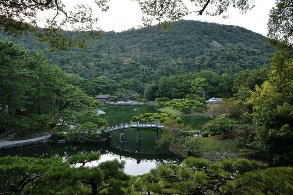 bridge over a pond