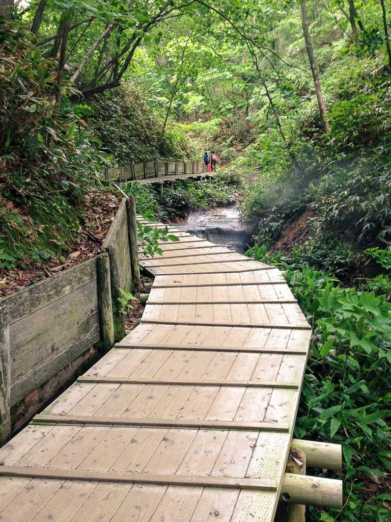 Trail leading to Oyunumagawa Brook Foot Bath