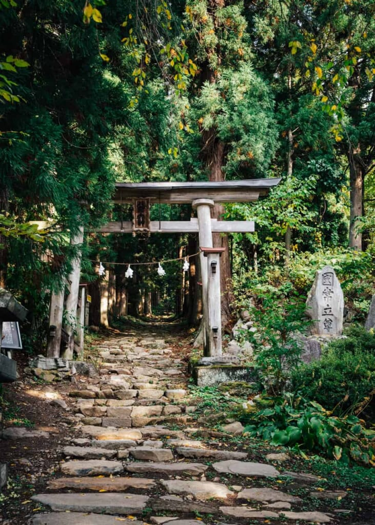 A torii showing the entrance of a shrine