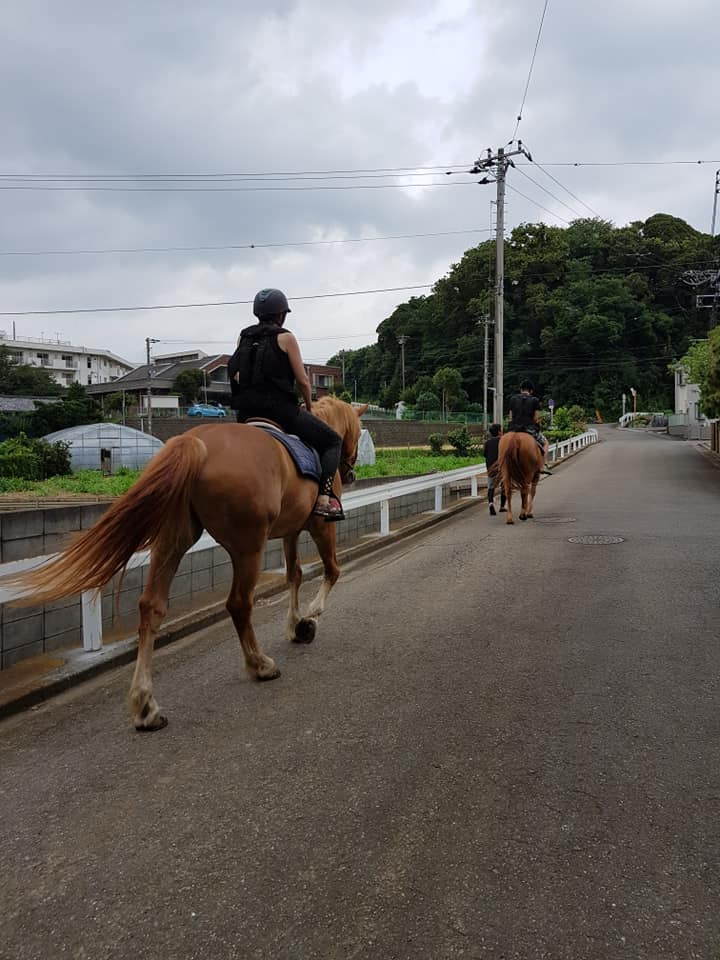Horse riding in Miura Kaigan, Japan.