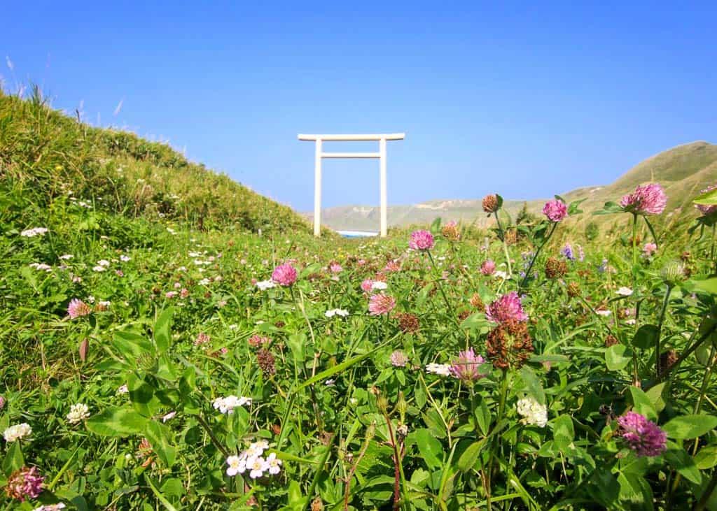 Torii gate along the Hiking Trails of Momoiwa Observatory Course