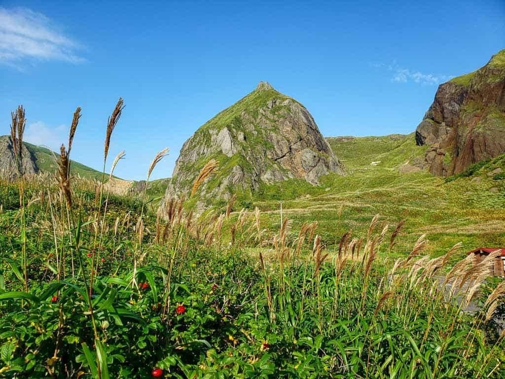 Hiking Path on Hokkaido's remote island of Rebun