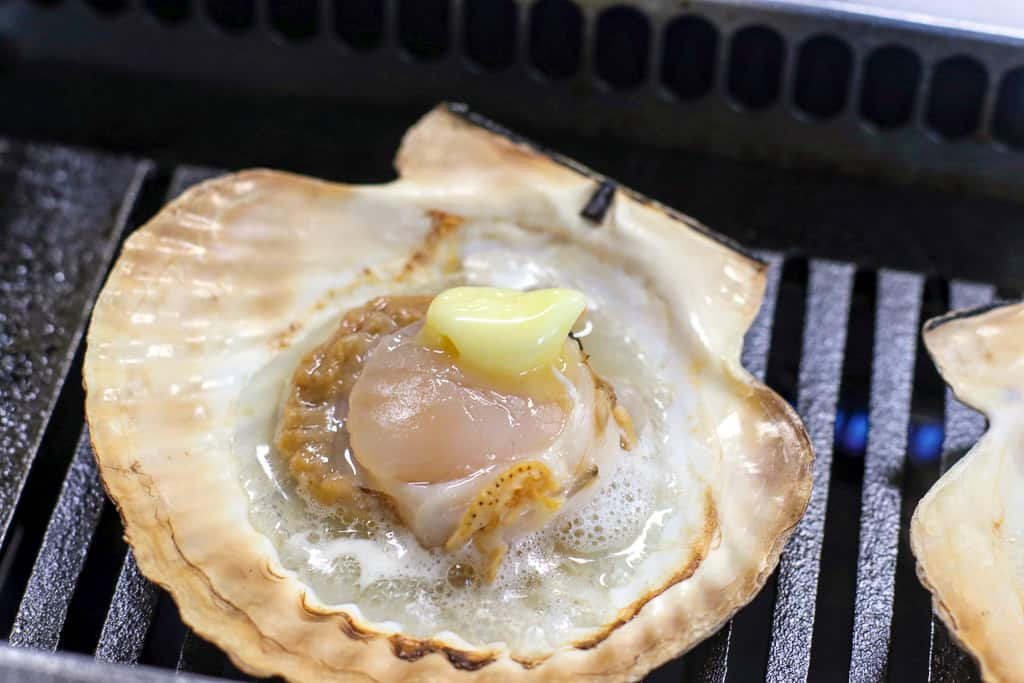 Sizzling scallop experience at Sarufutsu