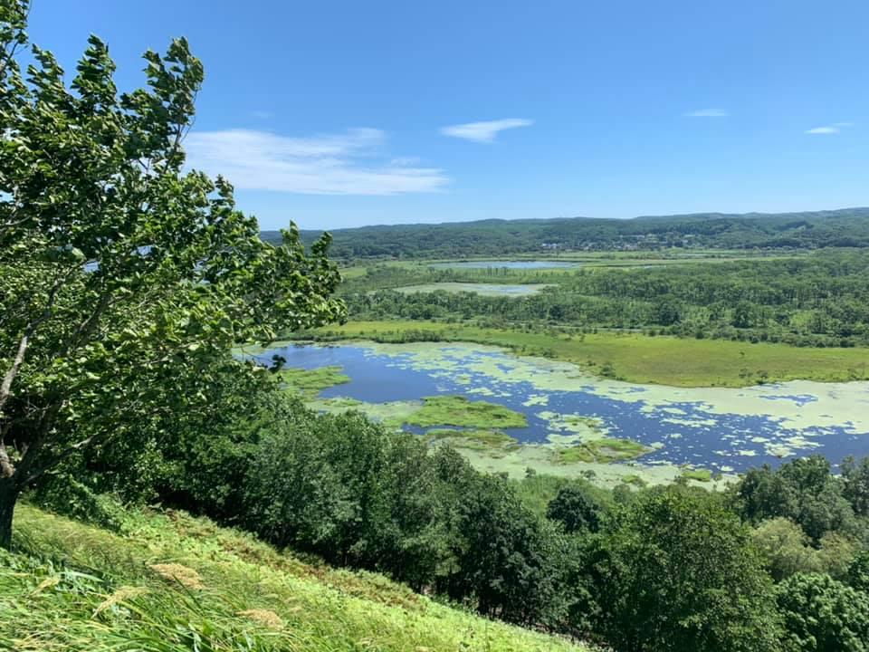 Kushiro wetlands seen from an observation deck