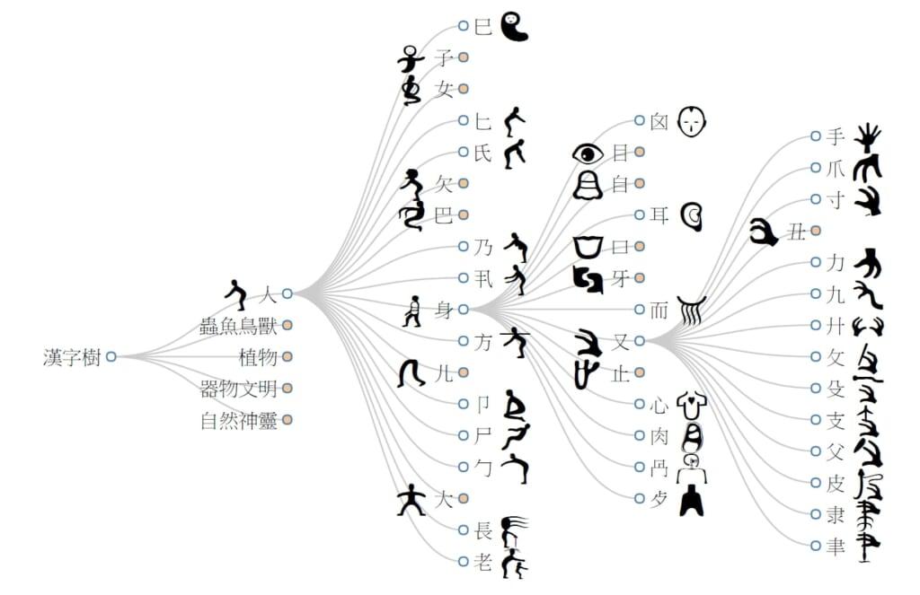 Ideogram evolution chart