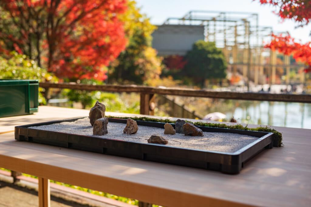 Japanese rock garden with autumn foliage in the background, in garden  near Kyoto