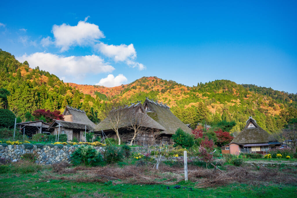 kayabuki no sato thatched roof houses in Japan during autumn