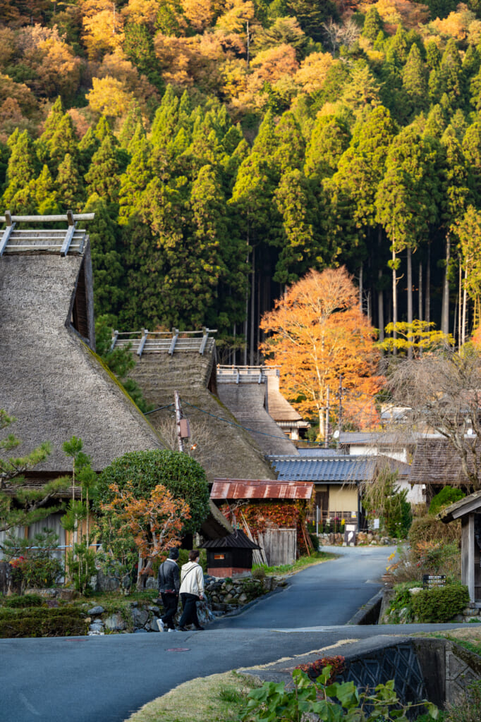 traditional japanese thatched roof houses near kyoto in kayabuki no sato