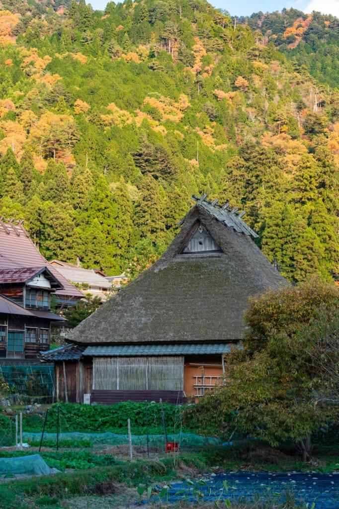 thatched roof house in japan at kayabuki no sato