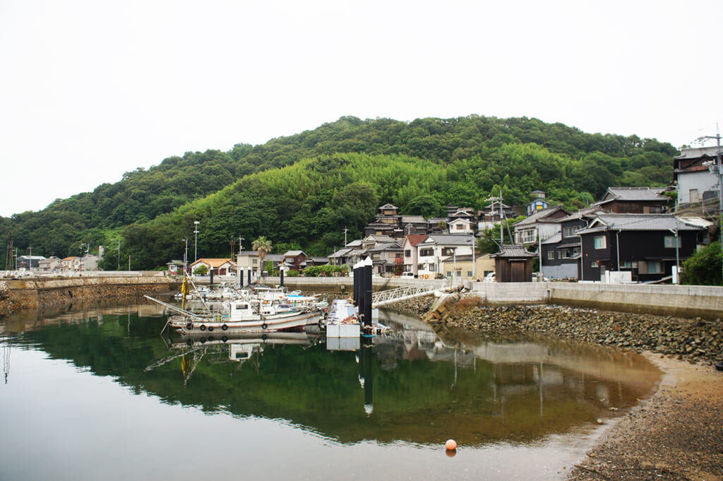 the harbour in Manabeshima, a cat island in Japan